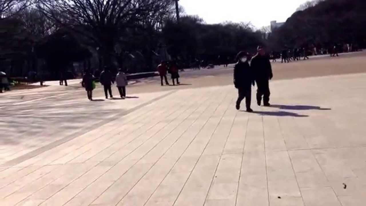 亀凛蓬莱のインチキ!【 ヒーリング動画 】 Green Charge (グリーンチャージ) 〜良き人脈〜