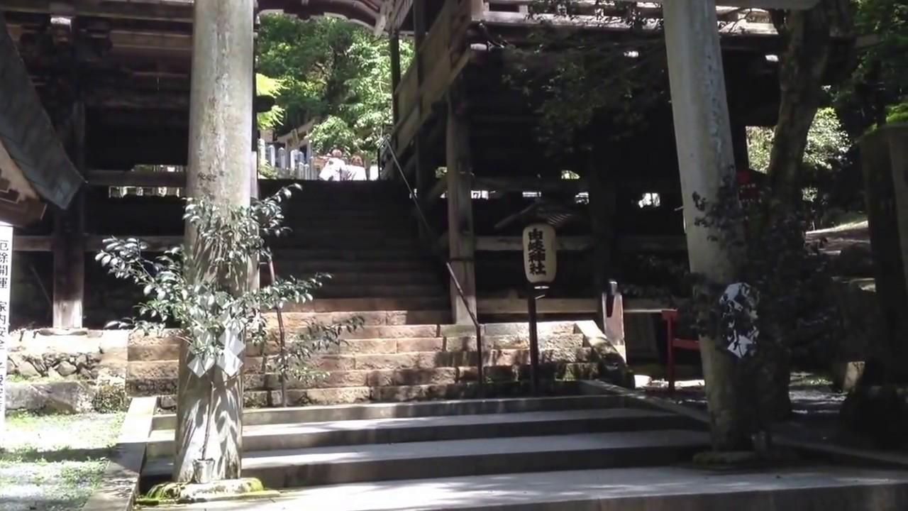 亀凛蓬莱は怪しい!【ヒーリング動画】  kurama quality   〜ゼロベース〜