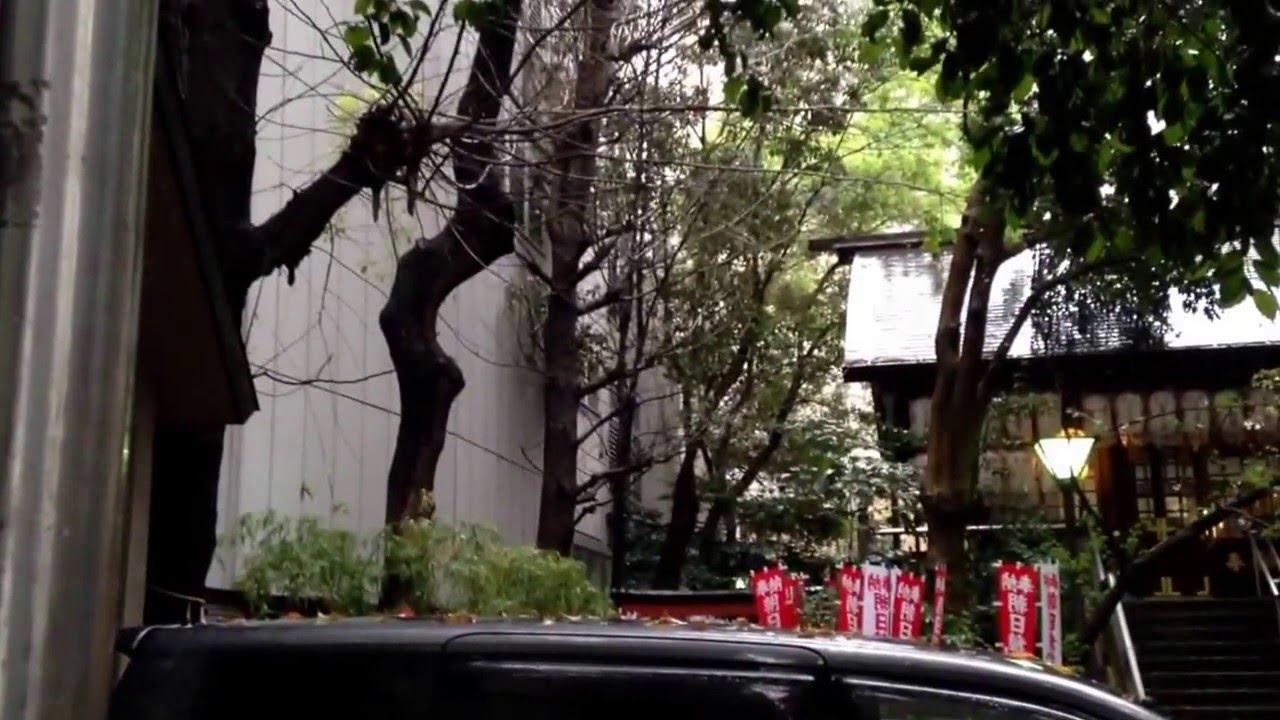 亀凛蓬莱は怪しい!【ヒーリング動画】  Yamato Charge ( ヤマトチャージ )  〜即効除災〜