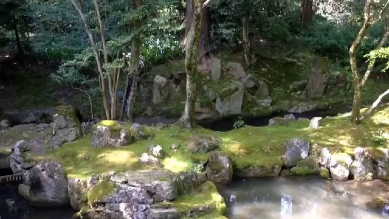 亀凛蓬莱は怪しい!【ヒーリング動画】 アマテラスの踊り子 〜目標達成〜