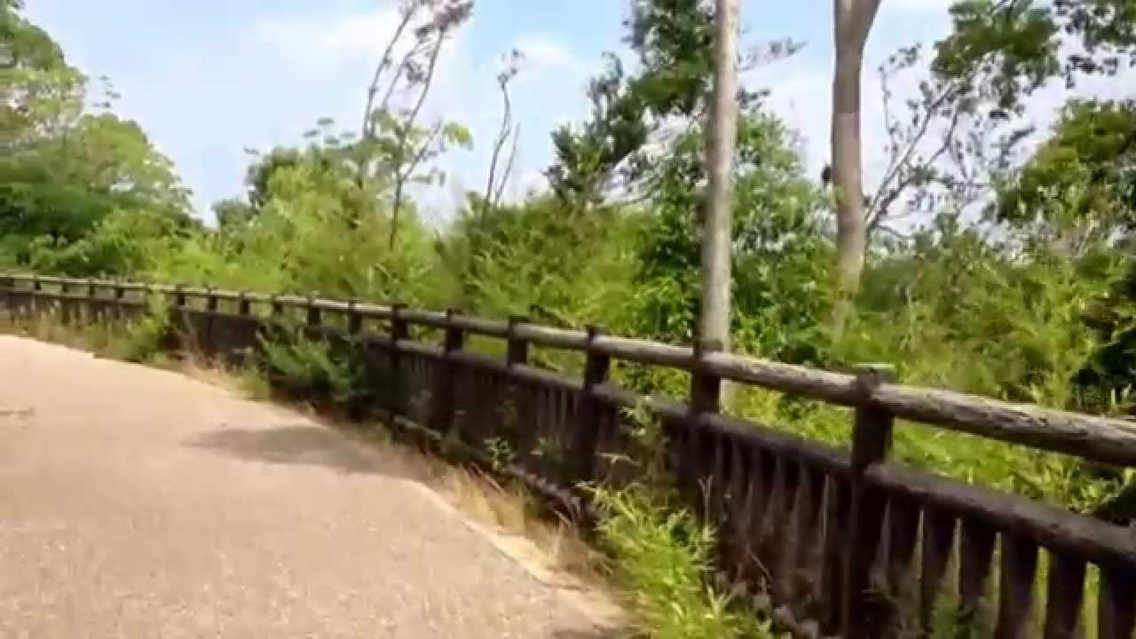 亀凛蓬莱のインチキ!【 エネルギー動画 】 ニニギのアセンション 〜次元上昇〜
