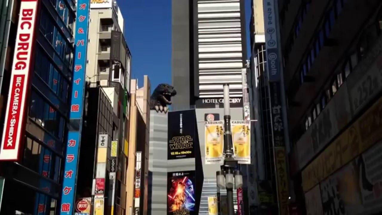 亀凛蓬莱は怪しい!【エネルギーワーク動画】  Meguri Do  〜大願成就〜